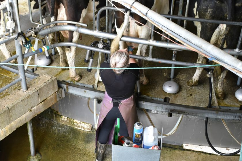 Agricultural Apprenticeships – Are They Fruitful?